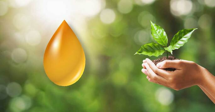 A drop of oil next to a hand holding a plant.